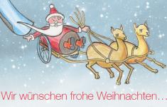 Das Bild zeigt einen Weihnachtsmann auf einem Schlitten, der von zwei Alpakas gezoegen wird.